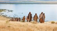XVI Niedziela zwykła