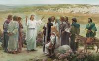 XV Niedziela zwykła